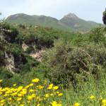 Panorama Agerola Agriturismo